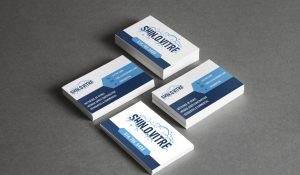 cartes d'affaire et création de logo pour shin.o.vitre